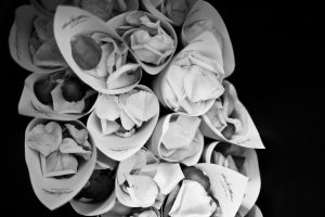Pétales de roses Label' Emotion Paris